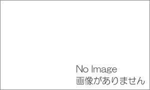 世田谷区街ガイドのお薦め カレーショップ・とんがらし